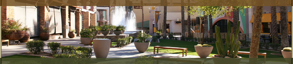 Chandler Real Estate - Mall